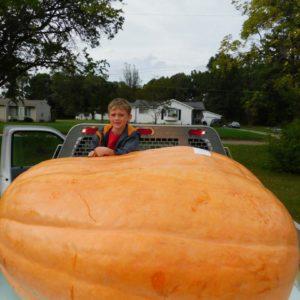 1195 lb Welton