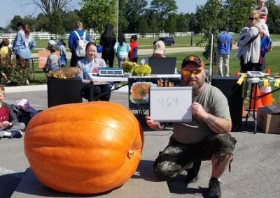 464 lb Orange Pumpkin