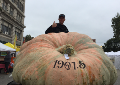 1,901.5 lb 1st Place Operation Pumpkin $6,000 Winner!