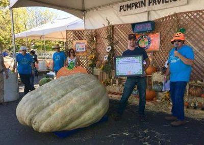 2077 lbs Pumpkin
