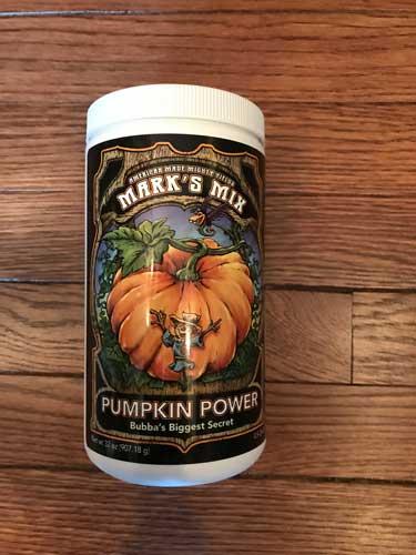 marks mix pumpkin power