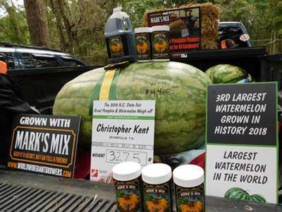 Chris Kent's Record Watermelon